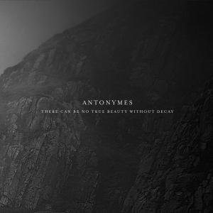 Antonymes cd