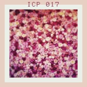 ICP017 cover